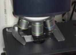 Visione microscopio